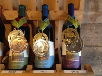 ...and results in award winning wine!