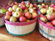 ... but no apple picking for us ... we'd rather just buy the juicy sweet honeycrisps.