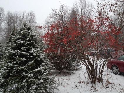 ...as snow fell ...
